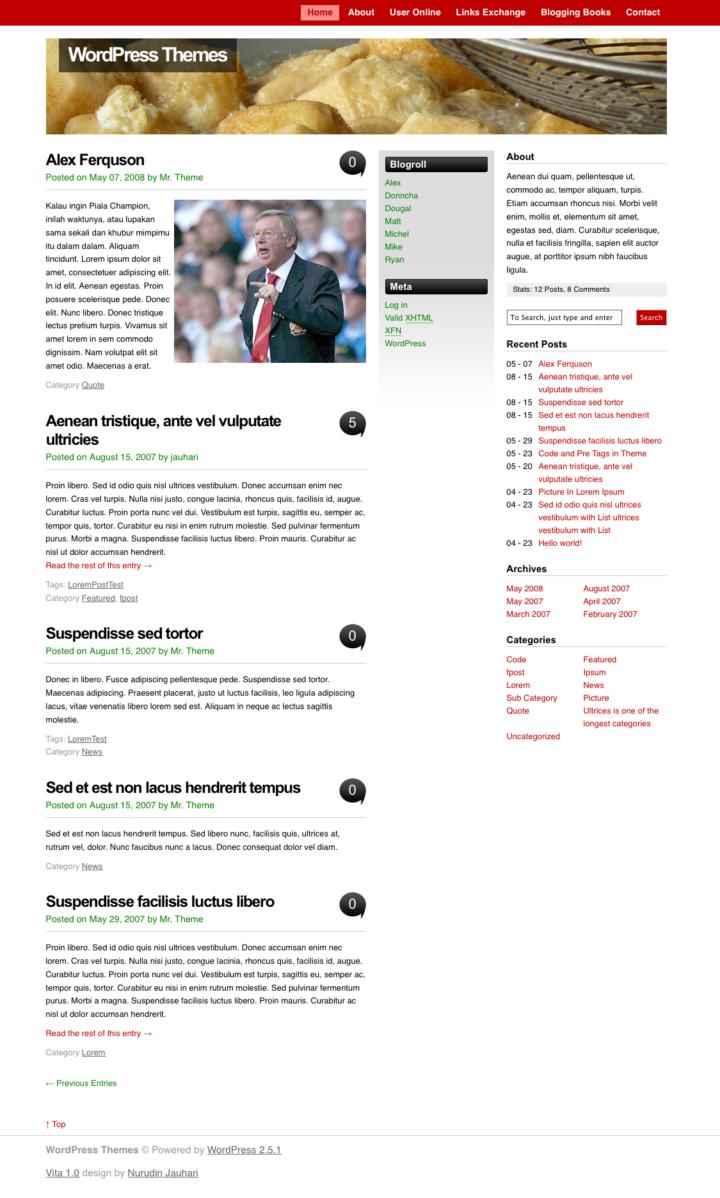 Vita WP Theme Screenshot