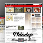 Ndadap WordPress Theme