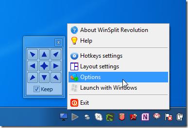 WinSplit Revolution option