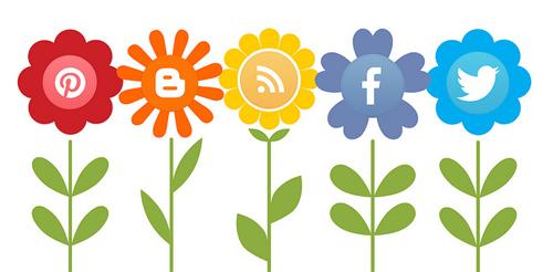 optimize social media content