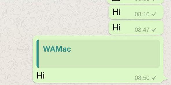 Quote Message WhatsApp